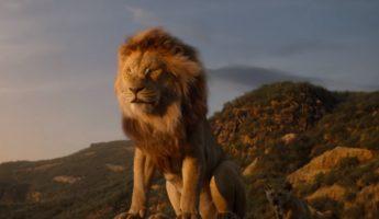 Spéciale Roi Lion