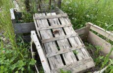 Agriculture : Les jardins de Simone